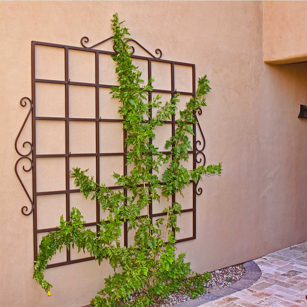 First Impression Ironworks Trellis on Wall of Home