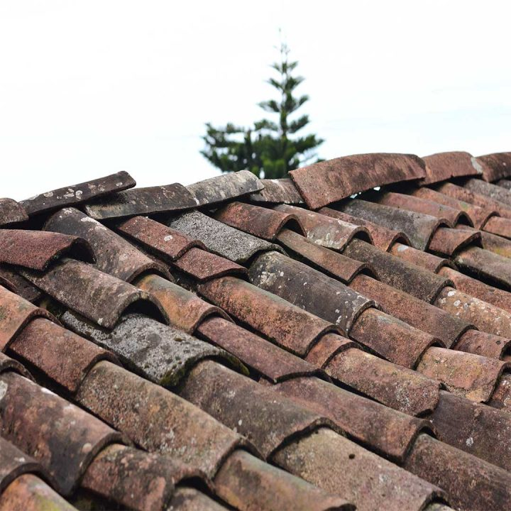 Old and Worn Roof Shingles