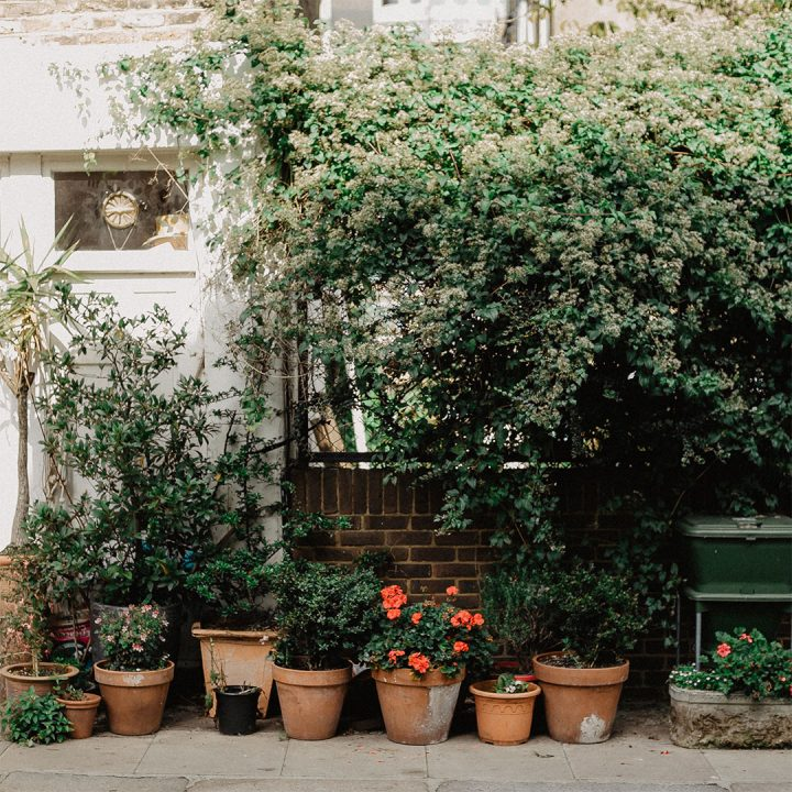 Wall outside of a home with several planters filled with flowers and plants